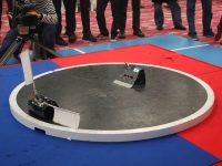 How to Make a Good Sumo Robot