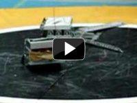 Robot Sumo Drama – Sumo Robot Video
